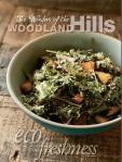 WoodlandHills1