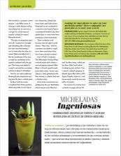 Micheladas2