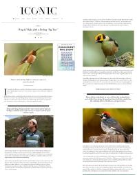 BirdingIconicP1